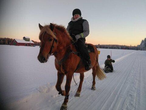 Kajona Kuvaaja Tanja Ludsten